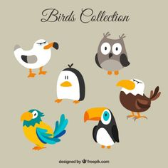 Ideas bird cartoon drawing illustration for 2019 Cartoon Birds, Funny Birds, Bird Illustration, Character Illustration, Bird Drawings, Cartoon Drawings, Bird Tattoo Sleeves, Bird Tattoo Meaning, Bird Sketch