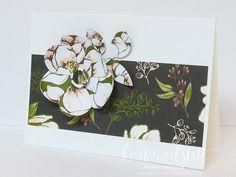 Kreativwerkstatt Karin Müller – unabhängige Stampin' Up! Demonstratorin, Katalogversand mit Goodies Up, Catalog, Cards, Creative