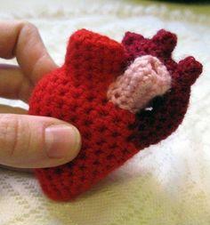 Cuando te gusta el #crochet y la #anatomía. #ciencia #salud #medicina #corazón #heart #humor #science