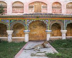 Karen Knorr - Maharani's Attendant, Queens Palace,Thanjavur Palace, Tanjore @ India Song | StoryLTD