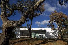 Gallery - House Quinta Do Carvalheiro / GSMM Architetti - 10