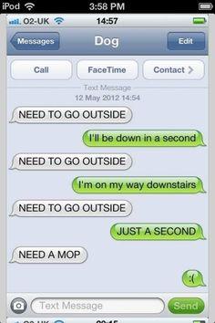 Haha dog texts