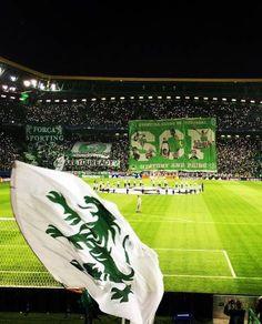 Portugal Soccer, Scp, Football Fans, Baseball Field, Champs, Grande, Joker, Fitness, Soccer
