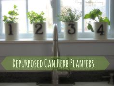 Repurposed Can Herb Planters | Cozy Country Living