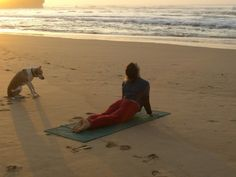 beach.  dog.  yoga.
