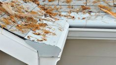 For a maintenance-free Leaf Gutter Guard system that will prevent the accumulation of leaves, seed pods, twigs, and other debris in your gutters, contact us today! Click here to get 15% off>> http://www.gutterhelmetmn.com/freeestimate