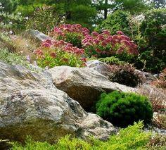 Rock Garden - contemporary - landscape - new york - LDAW Landscape Architecture, PC