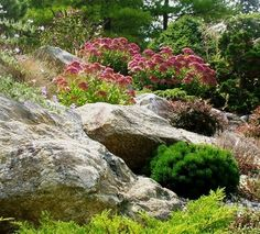 Rock Garden Design Ideas, Pictures, Remodel, and Decor - page 4