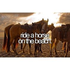 ...or anywhere for that matter (wasn't on the beach, but I have now been horseback riding. Loved it)
