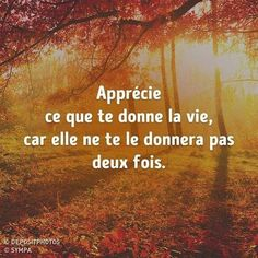 Pensées #Penséesdyjour #Pensée #Proverbe #Penséespositive #Portebonhour #Philisophie #Vivre #Momentpresent #Rêve #Sérénité #Citation Freedom Meaning, Plus Belle Citation, Quote Citation, Aesthetic Backgrounds, Powerful Words, Positive Attitude, Motivation, Carpe Diem, Positive Affirmations