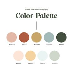 Color Palette for Brooke Silverman Photography