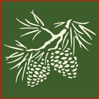Pine Cone stencil