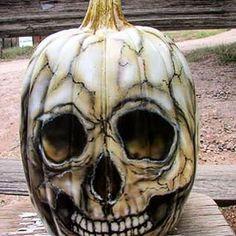 TagYerit Presents: Painted Pumpkins Skull Pumpkin, Scary Pumpkin, Pumpkin Art, Pumpkin Crafts, Pumpkin Painting, Pumpkin Ideas, Painting On Pumpkins, Pumpkin Carvings, Pumpkin Faces