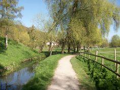 Chemin le long de la Bièvre.   Path along Bievre river.