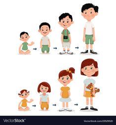 Print vector image on VectorStock Sensory Activities, Kindergarten Activities, Activities For Kids, Preschool Writing, Preschool Science, Human Life Cycle, Sequencing Pictures, School Images, Islam For Kids