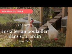 Comment passer à côté de nos amies les poules quand on aborde l'Autonomie alimentaire ? Chacun voit midi à sa porte: pour la viande ou juste pour les œufs, nous ne ferons pas de moralisation,…