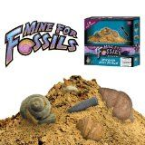 Mine For Fossils Science Kit (Toy)By Discover with Dr. Cool