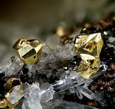 Gold from Verespatak (former name in the Austro-Hungarian empire of the current Rosia Montana, Rumania)