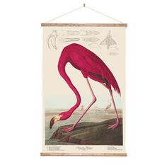Retro Wall Chart  Flamingo | Iko Iko, the most exciting shop for gifts, homewares, accessories and more.