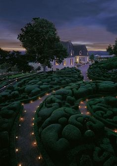 Topiary gone crazy.  Ok, I love gardens, but this seems a bit nuts to me...  Agree or not?