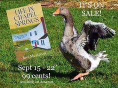 He's excited and so am I! Available at https://www.amazon.com/Life-Chapel-Springs-Book-ebook/dp/B074MTLQF6/ref=tmm_kin_swatch_0?_encoding=UTF8&qid=1497806008&sr=8-1