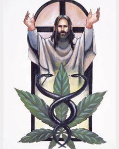 """Take Tincture like Kings 9 lbs toppers to create the holy anointing oil SOMEONE DOSE ME..... AMEN!!!!! PLEASE READ ON ITS EASTER GET EDUCATED IF JESUS WASNT ANNOINTED WITH CANNABIS HE CANT BE CHRIST .....as written The Anointed"""" . The Messiah was recog https://www.cbd-cannabis-oil.com/blogs/news"""