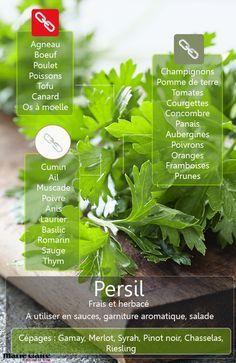 COMMENT UTILISER LE PERSIL EN CUISINE Le persil ne sert pas seulement à décorer un plat comme dans les anciennes recettes de cuisine. Au contraire, il joue un grand rôle pour sublimer viandes et légumes. Découvrez avec quels produits il apporte saveur, fraîcheur et noblesse.
