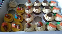 Assorted cupcakes including a camel or two