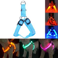 New Nylon LED Dog Harness Pet Cat Dog Collar Harness Vest Safety Lighted Dog Harness Small / Big / Large Size Wholesale