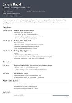 Basic Resume Examples, Professional Resume Examples, Simple Resume, Modern Resume, Sales Resume, Manager Resume, Resume Layout, Resume Design, Design Design