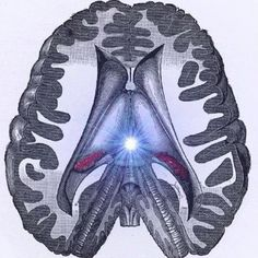 Pineal Gland and its usage...