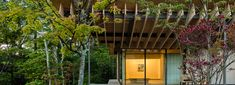 kengo kuma's mountainside guesthouse mimics the motion of local japanese birds in flight