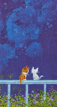 background, cat, cute, desktop, wallpapers, First Set on Favim.com, wallpaper iphone, фоны, First set, wallpapers for iphone
