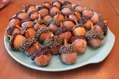 """Acorn"" Donut Holes - Fast, easy and oh-so-cute for fall celebrations! Dip donut holes in Nutella or melted chocolate then dip same end in chocolate sprinkles. Insert pretzel piece for the 'stem'."