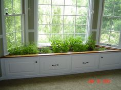 WINDOW PLANTER BOX - repurposed window seat (probably not a good idea for those of us with cats, though!)