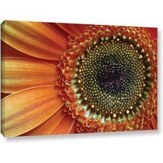 Dan Holm Big Orange Gallery-Wrapped Canvas, Size: 12 x 18, Orange