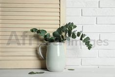 Beautiful eucalyptus branches in vase on white wooden table. Buy Creativity & Imagination. Take a look at what the world's best photographers have to offer at africa-images.com Vase With Branches, Eucalyptus Branches, What The World, Best Photographers, Wooden Tables, Imagination, Creativity, Africa, Stock Photos