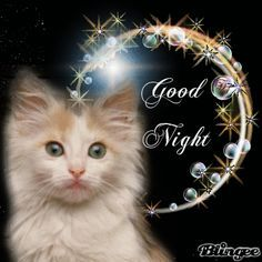 10 adorable good night quotes and beautiful good night gifs to help you enjoy the night. Good Night Thoughts, Good Night My Friend, Lovely Good Night, Good Night Sweet Dreams, Good Night Image, Good Morning Good Night, My Dear Friend, Good Night Greetings, Good Night Messages
