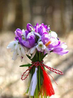Art Floral, Greenhouse Plants, Bouquet, Spring Is Coming, Ikebana, Spring Time, Winter Wonderland, Flower Arrangements, Happy Birthday