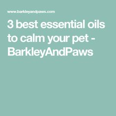 3 best essential oils to calm your pet - BarkleyAndPaws