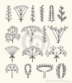 Set of vector different types of inflorescence