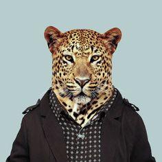 Zoo Retratos - Torne-se o animal