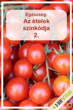 Piros és a likopin: az erek védelmezője. A piros ételek a likopin nevű fontos antioxidáns anyagnak köszönhetik élénk színüket. A vörös színűeké pedig a betain, amely tumor ellen kiváló hatású. Ezen kívül segíti a vörösvérsejtek regenerálását és szaporodását, vagyis a vérszegénység ellenszerei. Vitamins, Paleo, Vegetables, Healthy, Garden Paths, Medical, Food, Per Diem, Health