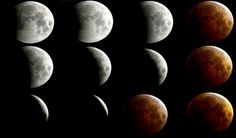 'Blood moon' and total lunar eclipse - the best photos Eclipse Photos, Lunar Eclipse, Blood Moon, Cool Photos, Space, Floor Space, Lunar Eclipse Live Stream, Spaces