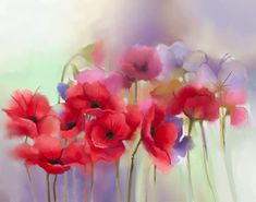 DesignArt 'Watercolor Red Poppy Flowers Painting' 3 Piece Painting Print on Wrapped Canvas Set Watercolor Red, Watercolor Flowers, Watercolor Paintings, 3 Piece Painting, Painting Prints, Red Poppies, Poppy Flowers, Canvas Art, Canvas Prints