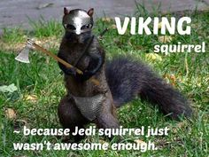 Viking squirrel--because Jedi squirrel just wasn't awesome enough