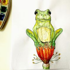 Frog, illustration, watercolor, draw, flower