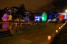 Fête des lumières à Lyon Labuire (2010)