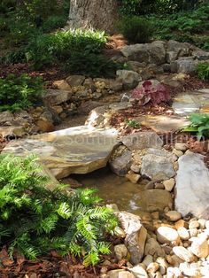 We're wanting to put in a small scale upper and lower pond connected by a stream... and want to put a large rock bridge in as well...