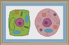 Plant and animal cell nerdy cell biology by nerdylittlestitcher, $3.00